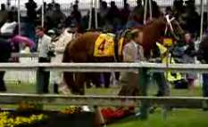 Preakness Winner Curlin Ties Record – Street Smarts Loses By A Head