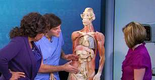 Dr Oz Discusses Erectile Dysfunction Hair Transplants And Women's Bladders On Oprah Winfrey Show