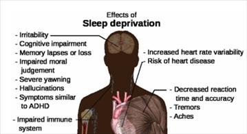 sleep deprivation effects on body
