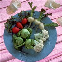 cruciferous vegetables - National Cancer Institute PD