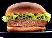 Hamburger - Credit: National Cancer Institute/Len Rizzi (photographer) - PD